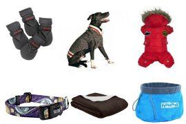Best Winter Gear For Dogs