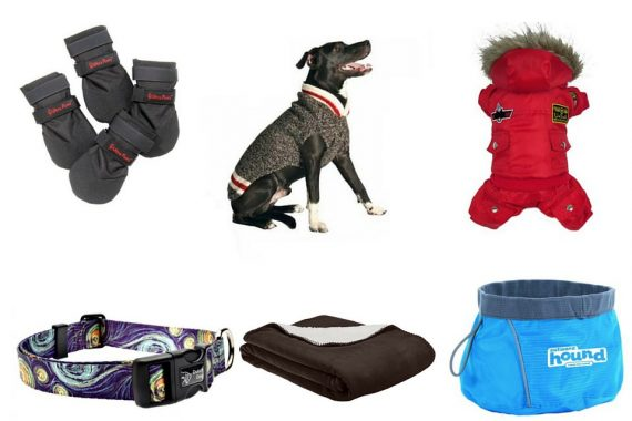 Best Winter Gear For Dogs